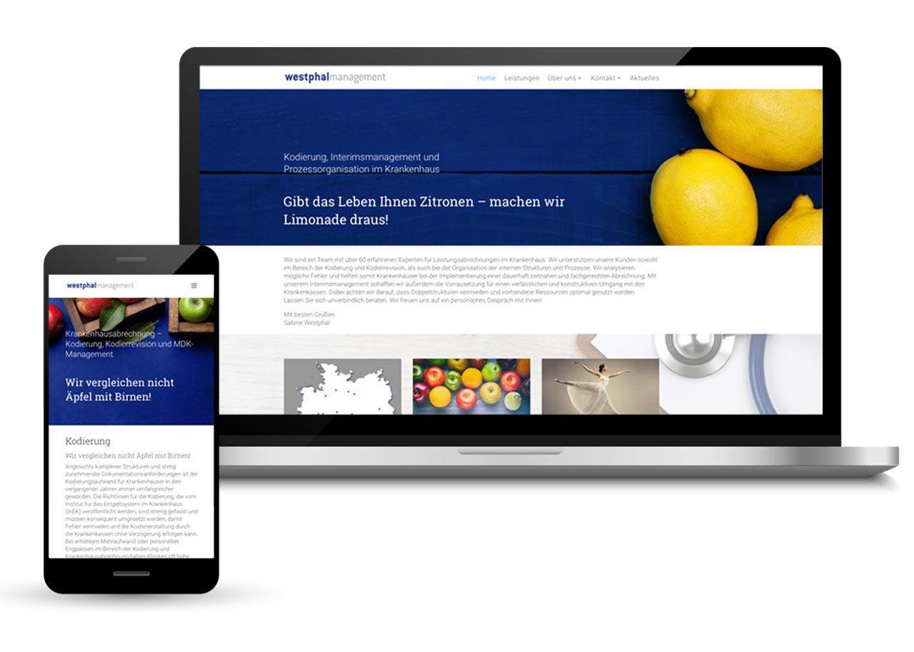 Webdesign für MDK-Management